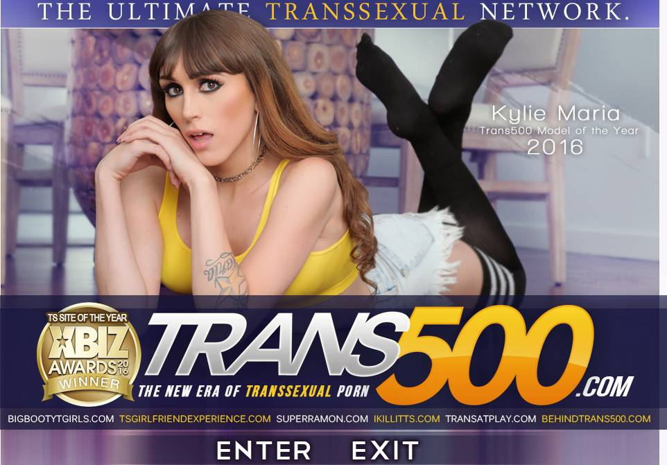 5 new adorable and working passwords for Trans500.com (Tranny Paysite)