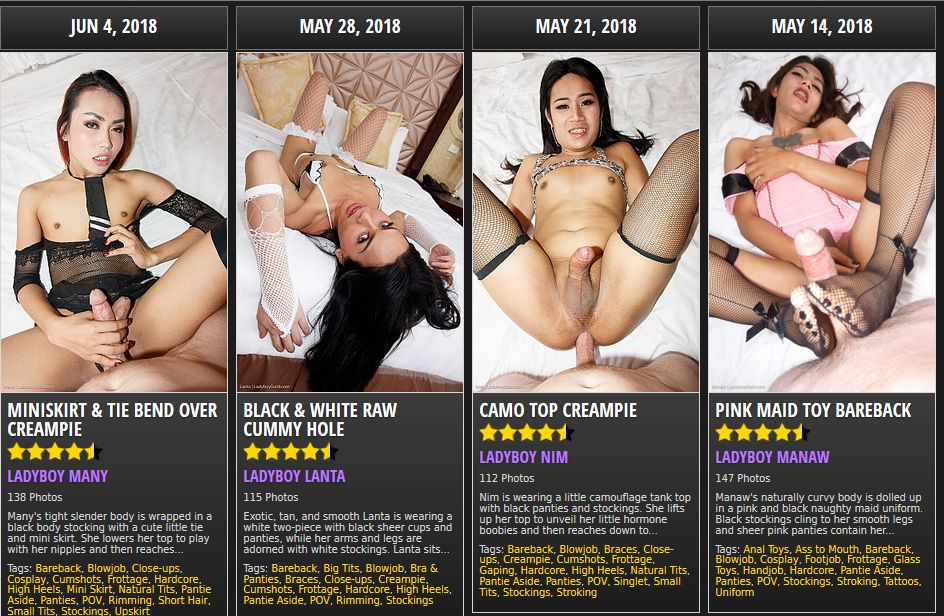 nulled 0day user and password for ladyboycreampie